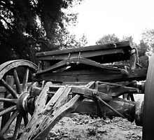 Buckboard BW by LawrencePhoto