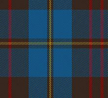 01860 Cameron Hunting Clan/Family Tartan Fabric Print Iphone Case by Detnecs2013