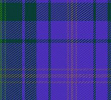 01863 Pacific Fashion Tartan Fabric Print Iphone Case by Detnecs2013