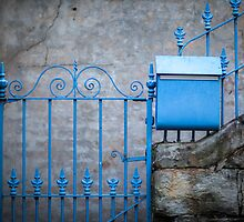 The Blue Gate by Jayne Ion