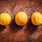 Citrus limon x 3  by MikkoEevert