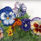 Pansy Princess by Sherry Cummings