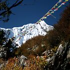 Prayer Flags in Nepal by lanesloo