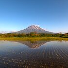 Mt Yotei & rice field by Paul Malandain