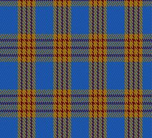 01915 Carlisle Ancient Clan/Family Tartan Fabric Print Iphone Case by Detnecs2013
