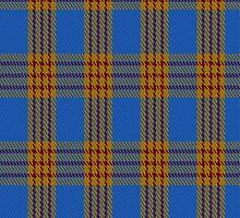 01915 Carlisle Ancient Clan/Family Tartan Fabric Print Iphone Case by Detnecs2013