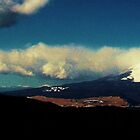 Mt. Fuji by CourtneyAnne82