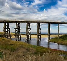 Kilcunda trestle bridge  by Melissa Dickson
