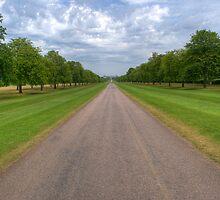 Long Walk Windsor by Chris Day
