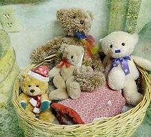Buddy Bears in a Basket by vigor