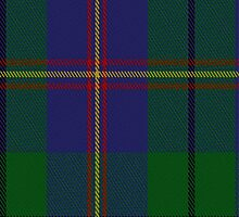 01917 Carmichael Clan/Family Tartan Fabric Print Iphone Case by Detnecs2013