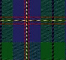 01917 Carmichael Clan/Family Tartan Fabric Print Iphone Case by Detnecs2013