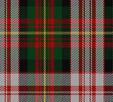 01921 Carnegie Dress Clan/Family Tartan Fabric Print Iphone Case by Detnecs2013