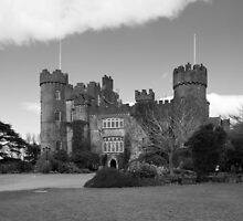 Malahide Castle by Martina Fagan