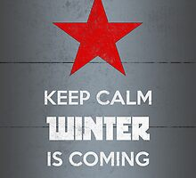 Winter Soldier Keep Calm Winter Is Coming by FandomFixation