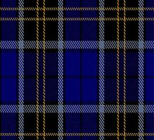 01926 Carrick High School Tartan Fabric Print Iphone Case by Detnecs2013