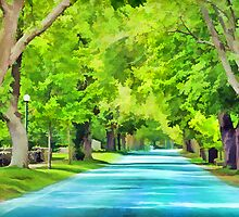 Bright Tree Lined Street by marciaurila