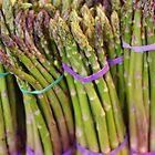 Asparagus by Tom  Reynen