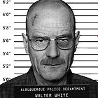 Walter White Heisenberg Mug Shot by stylishtech