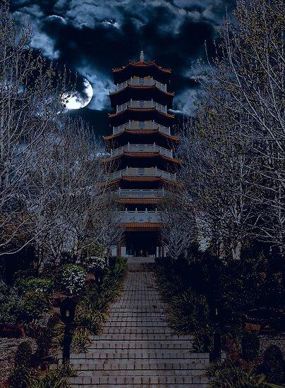 Moonlight by vilaro Images