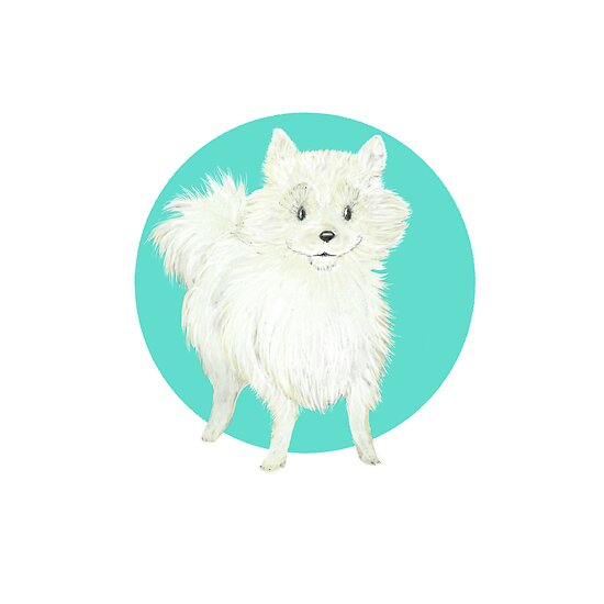 Timoni the Pomeranian by NightBloomer