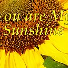 you are my sunshine by dedmanshootn