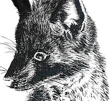 Black Fox Scratchboard by Amberella