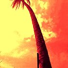 Malaysia palm tree  by lainer15