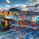 North Berwick Harbour by benny2324