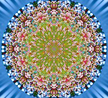 Branch of Prosperity Mandala by haymelter