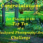 Banner 2 - Backyard Photography Art by teresa731