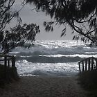 King Tide by pictureit