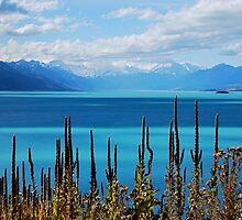 Lake Pukaki by pictureit