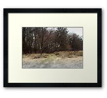 Searching for the truth Framed Print