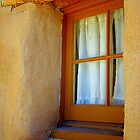 Window On The Southwest by Susan Bergstrom