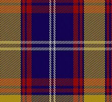 01012 Clemens & August Tartan Fabric Print Iphone Case by Detnecs2013
