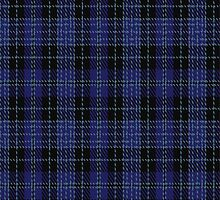 01019 Clergy (Smith) Clan/Family Tartan Fabric Print Iphone Case by Detnecs2013