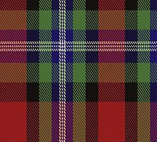 01027 Clyde (Hurleford) Tartan Fabric Print Iphone Case by Detnecs2013