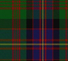 01029 Cochrane Clan/Family Tartan Fabric Print Iphone Case by Detnecs2013