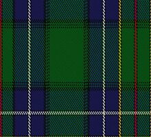 01035 Cockburn #4 Clan/Family Tartan Fabric Print Iphone Case by Detnecs2013
