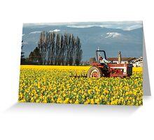 Workin' the Daffodil Fields Greeting Card
