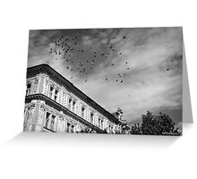 birds flying over Greeting Card