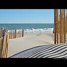 View On Atlantic Ocean Through Wooden Sand Fences - Hampton Bays, New York by © Sophie Smith