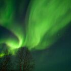 Skies Lighting Up Over Finland by Kristin Repsher