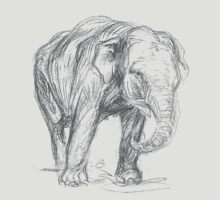 Elephant by taiche