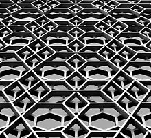Lattice 1 B&W by photonista