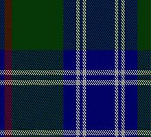 01051 Colvin Tartan Fabric Print Iphone Case by Detnecs2013