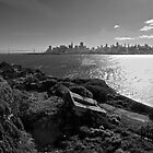 View of San Francisco from Alcatraz Island by Phil McComiskey