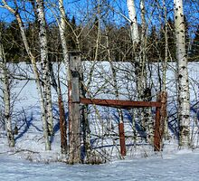 Old Fence I by EelhsaM