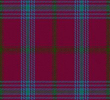 01071 Connaught (Lochcarron) District Tartan Fabric Print Iphone Case by Detnecs2013